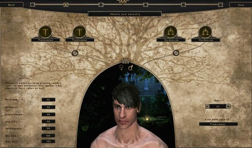 Mortal Online Character Creation 1 499x294