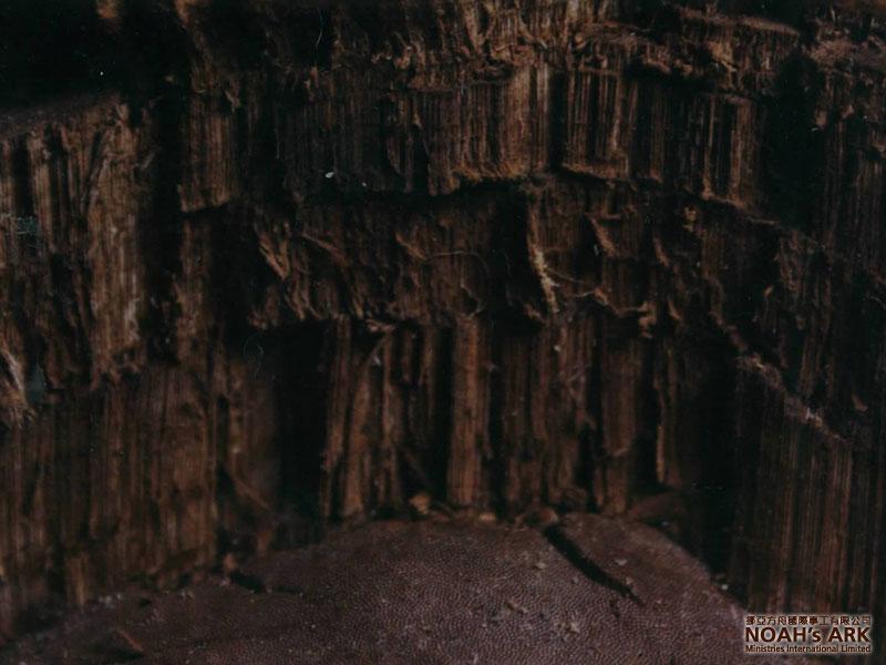 Arkwatch: The Mount Ararat Structure. « Ark's Ark - 800x600 - jpeg